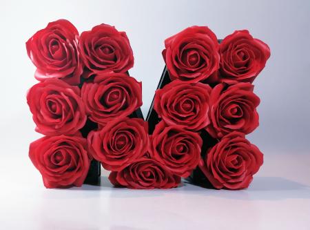 Aranjament Flori Sapun litera M, Rosu, 25cm0