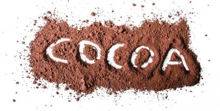 TORRAS Cacao Pudra Bio Ecologica fara Zahar si Gluten 150g [2]