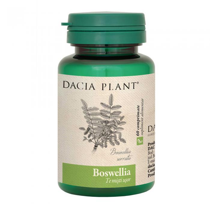 Boswellia 60 cpr Dacia Plant 0
