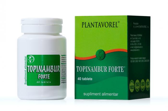 Topinambur Forte 40 tb Plantavorel 0