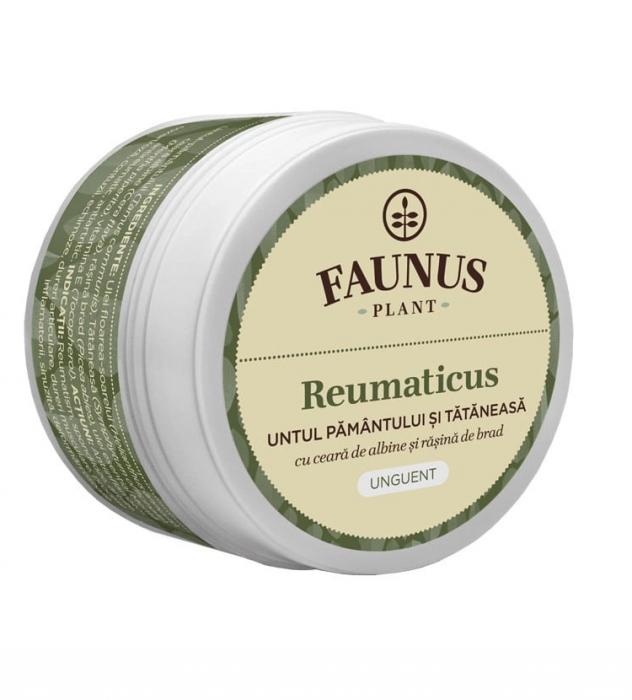 Unguent Untul Pamantului Si Tataneasa ( Reumaticus) 50 ml [0]