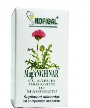 Mag Anghinar 60 cpr Hofigal 0