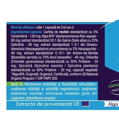 Articular Stem 120 cps Herbagetica 2