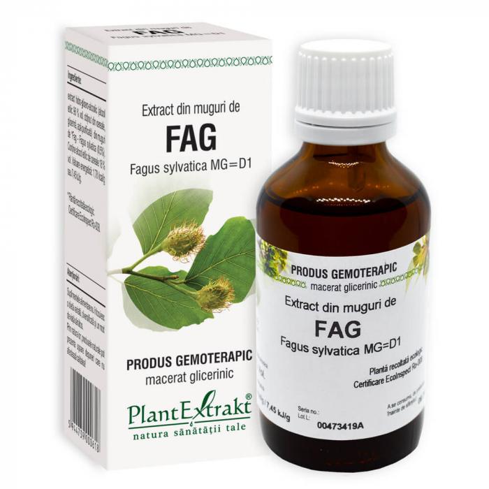 Extract din muguri de FAG ( Fagus sylvatica MG = D1 ) 50ml Plant Extrakt 0