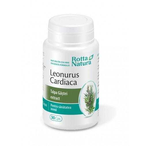 Leonurus Cardiaca Talpa Gastei Extract 30 cps Rotta Natura [0]