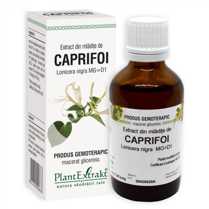 Extract din mladite de CAPRIFOI NEGRU ( Lonicera nigra MG = D1 ) 50ml Plant Extrakt 0