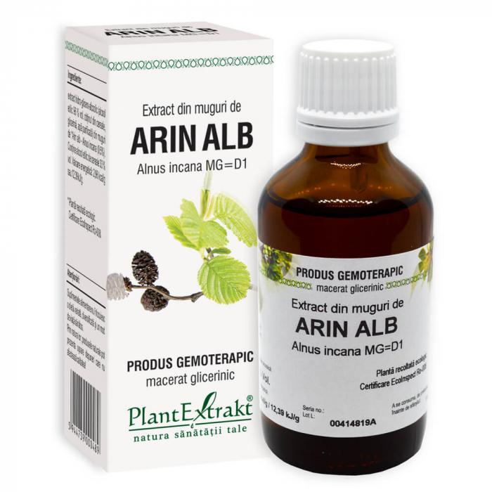Extract din muguri de ARIN ALB ( Alnus inc . MG= D1 ) 50ml Plant Extrakt 0