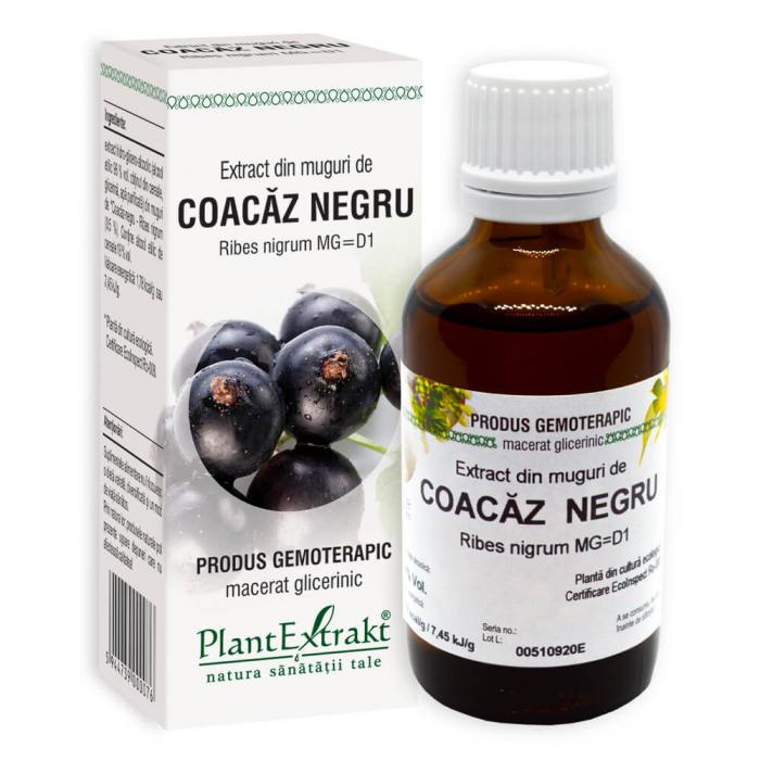 Extract din muguri de COACAZ NEGRU ( Ribes nigrum MG = D1 ) 50ml Plant Extrakt 0