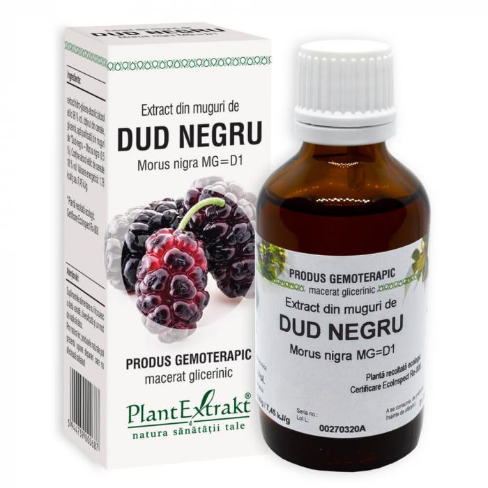 Extract din muguri de DUD NEGRU ( Morus nigra MG = D1 ) 50ml 0