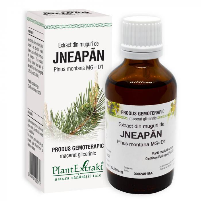 Extract din muguri de JNEAPAN ( Pinus montana MG = D1 ) 50ml Plant Extrakt 0