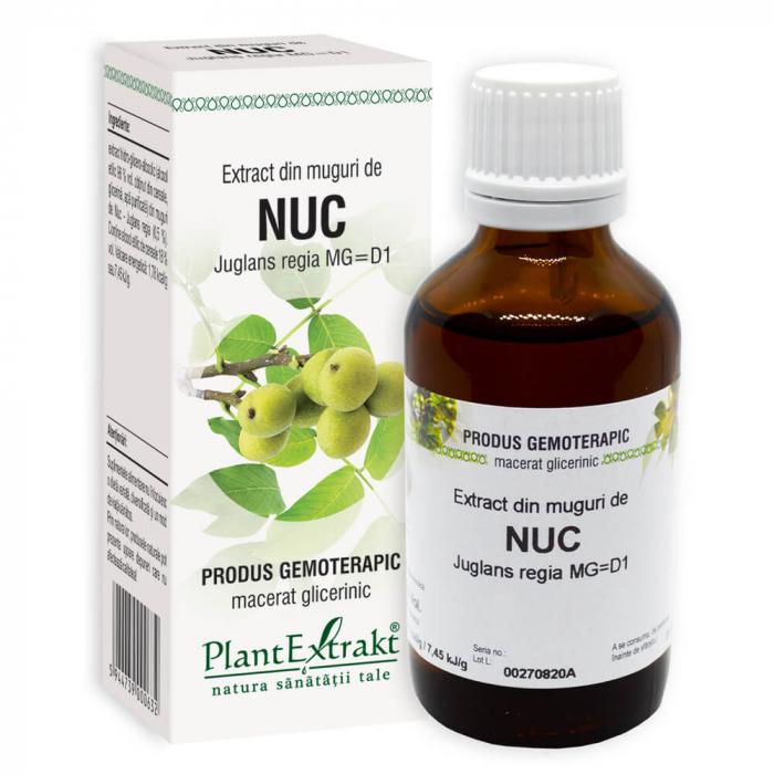 Extract din muguri de NUC ( Juglans regia MG = D1 ) 50 ml Plant Extrakt 0