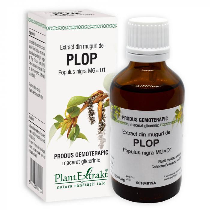 Extract din muguri de PLOP ( Populus nigra MG = D1 ) Plant Extrakt 0