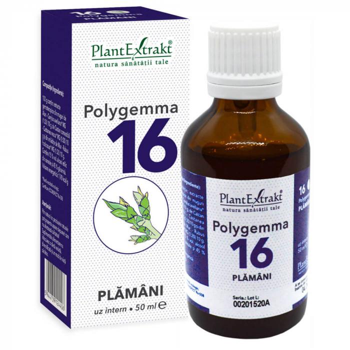 Polygemma nr. 16 ( Plamani - Detoxifiere ) 50 ml Plant Extrakt [0]