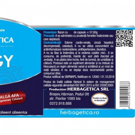 Alergy Stem 120 cps Herbagetica [2]