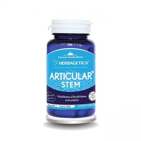 Articular Stem 60 cps Herbagetica #hai_la_miscare [0]