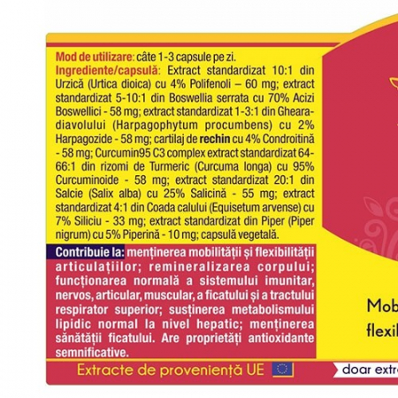 Artro Curcumin 95 120 cps Herbagetica [1]