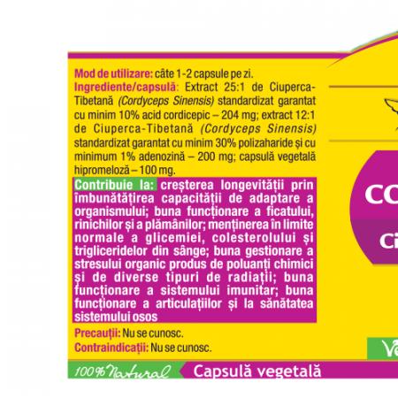 Cordyceps 10/30/1 - Ciuperca Tibetana Forte 30 cps Herbagetica1