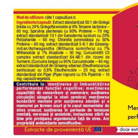 Ginkgo Curcumin 95 30 cps Herbagetica1