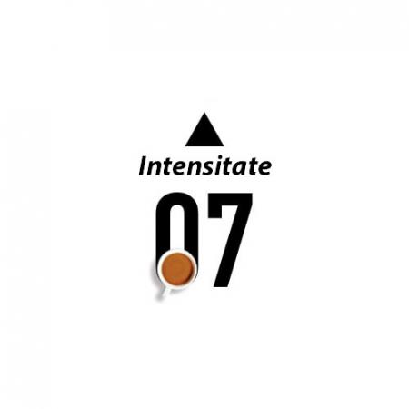 CAFEA DECA INTENSO, 10 capsule compatibile Bialetti - Capsuleria [1]