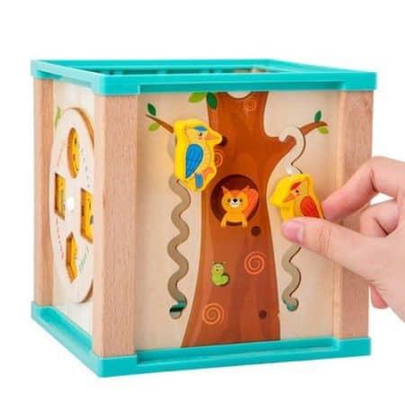 Cub Montessori din lemn cu 6 activitati [3]