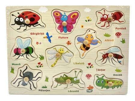 Puzzle din lemn in romana -Invatam insectele [0]