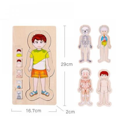 Jucarie educativa puzzle multistrat-partile corpului uman -baiat .1
