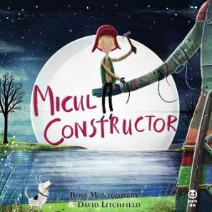Micul constructor 0