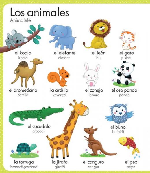 Primul meu dictionar spaniol-roman(Usborne) 1