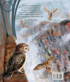 Harry Potter si piatra filosofala-ed ilustrata 4