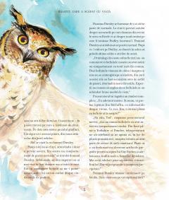 Harry Potter si piatra filosofala-ed ilustrata 2