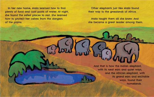 The Elephants' Ears 3