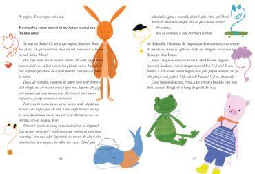 Caietul, roman mic pentru fetițele care cresc mari 3