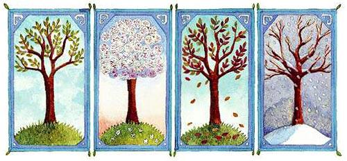 Basmele pădurii 1