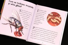 Furnici și alte insecte [1]
