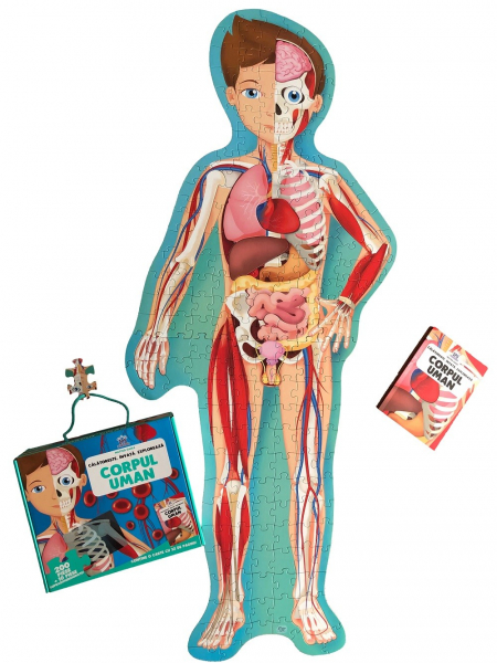 Corpul Uman - Călatoreste, Învață, Explorează 0