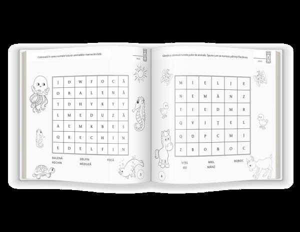 Cartea mea cu jocuri de cuvinte 1
