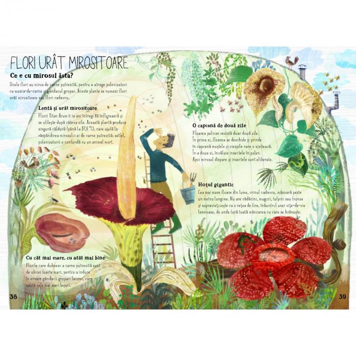 Marea carte despre flori 3