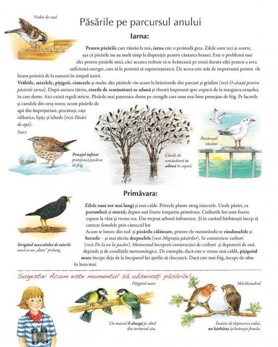 Minunata lume a pasarilor 3