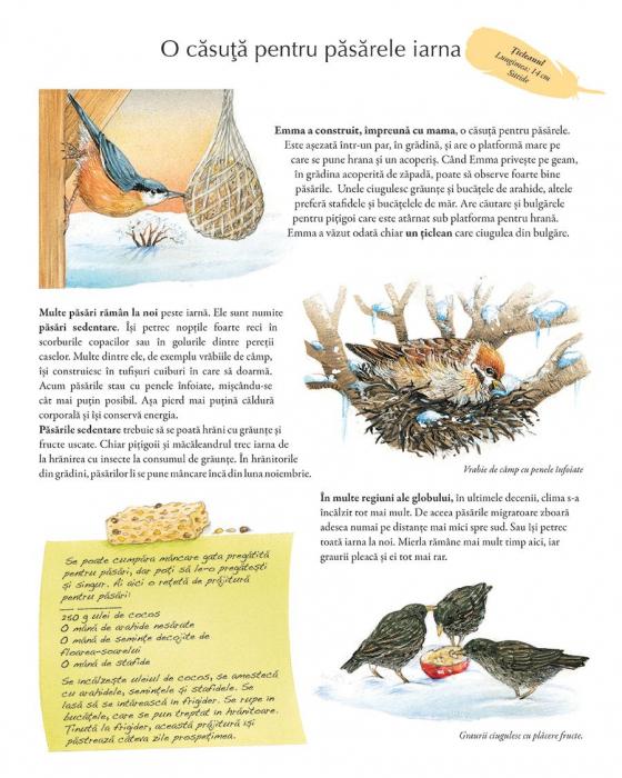 Minunata lume a pasarilor 1