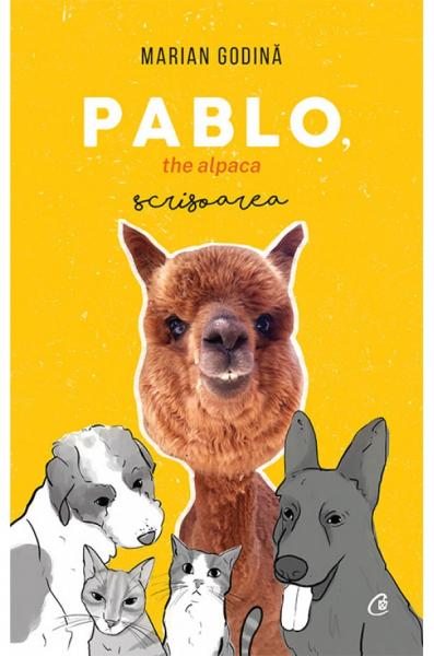 Pablo, the alpaca. Scrisoarea 0