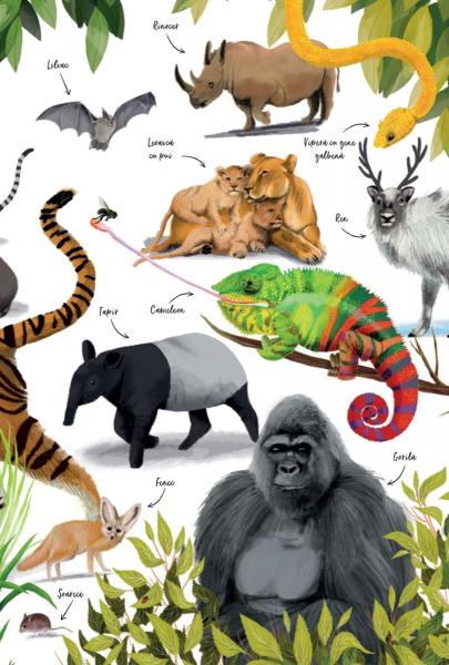Prima mea carte despre natura 5