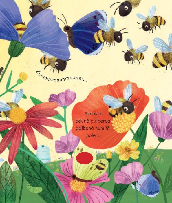 Stupul albinelor (Usborne) 2
