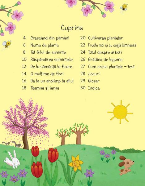 Prima mea carte despre cum cresc plantele (Usborne) [1]