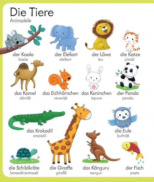 Primul meu dictionar german-roman (Usborne) 2