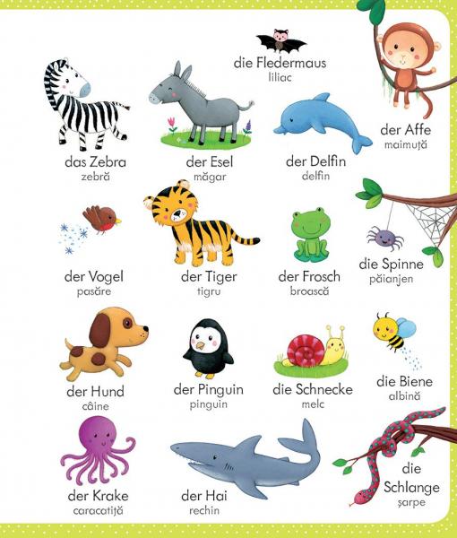 Primul meu dictionar german-roman (Usborne) 1