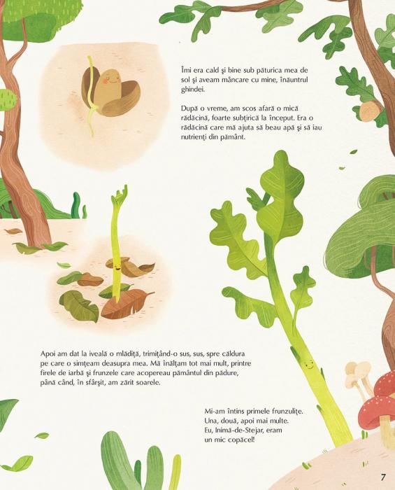 Viata secreta a copacilor [5]