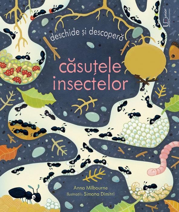 Casutele insectelor (Usborne) [0]