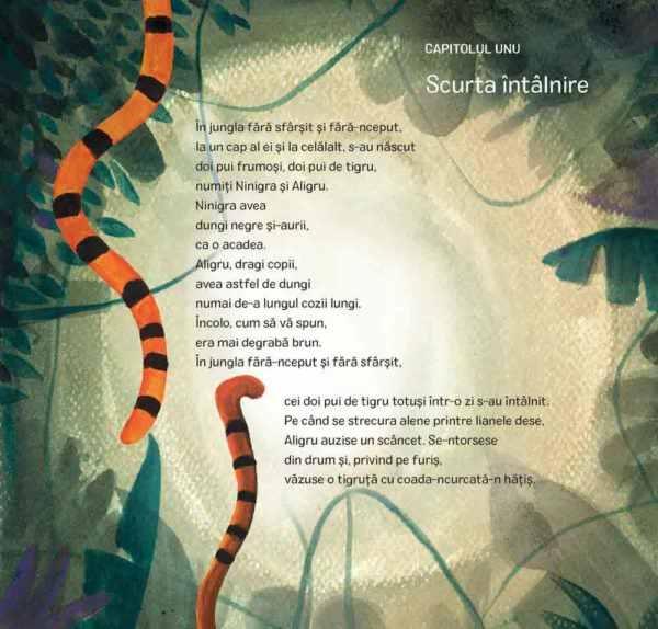 Povestea a doi pui de tigru 1