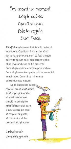 Sunt Pace: O Carte despre Mindfulness 1