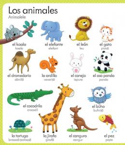 Primul meu dictionar spaniol-roman(Usborne)1